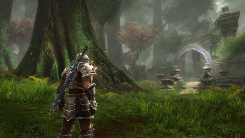 http://img2.looper.com/img/gallery/awesome-video-games-no-one-bought/kingdoms-of-amalur-reckoning.jpg