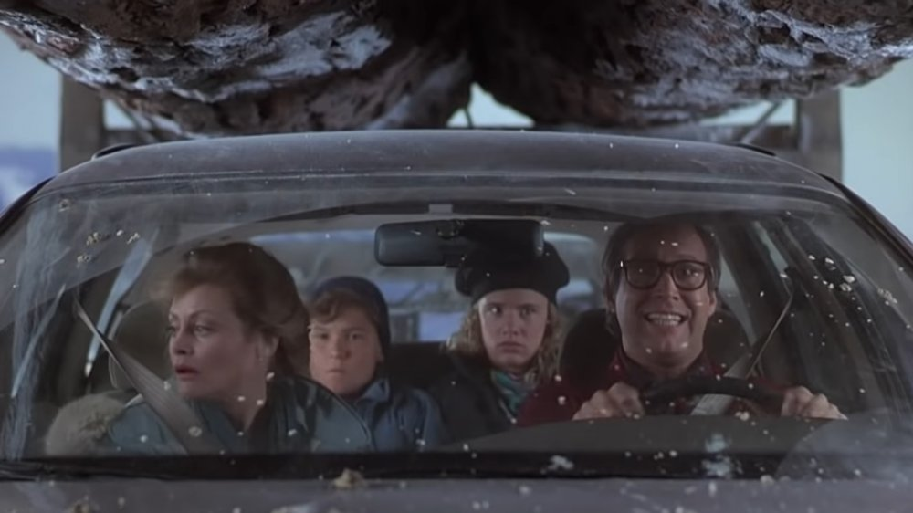 Dumb things in National Lampoon\u0027s Christmas Vacation
