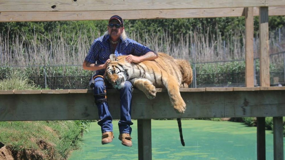 Here's how much money Joe Exotic is worth