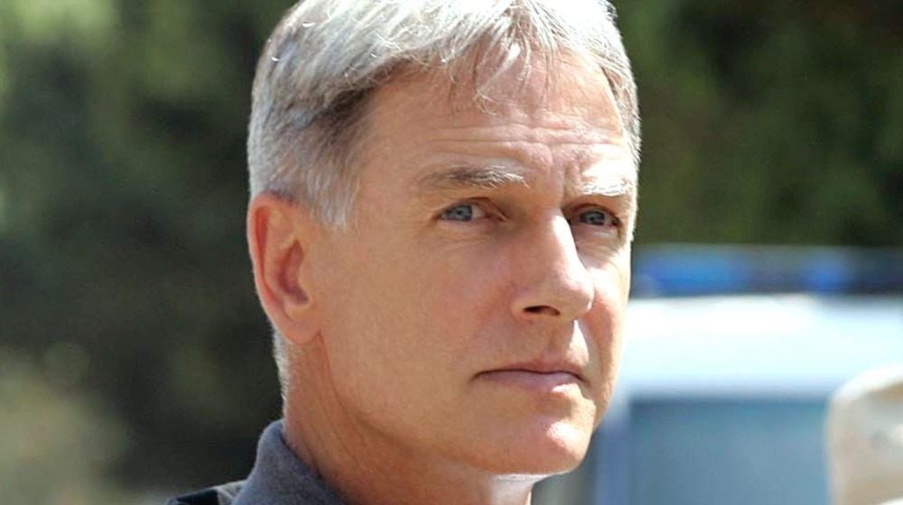 The NCIS Season 5 Cameo That Means More Than You Think