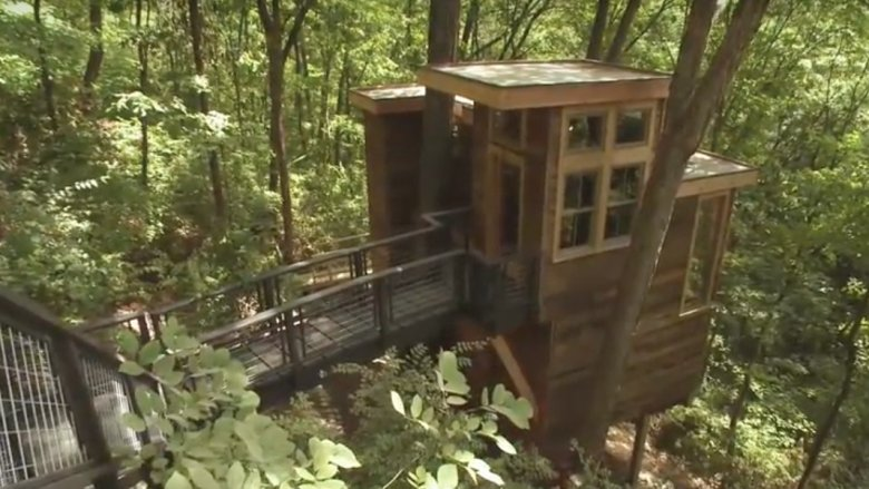 Scene from Treehouse Masters